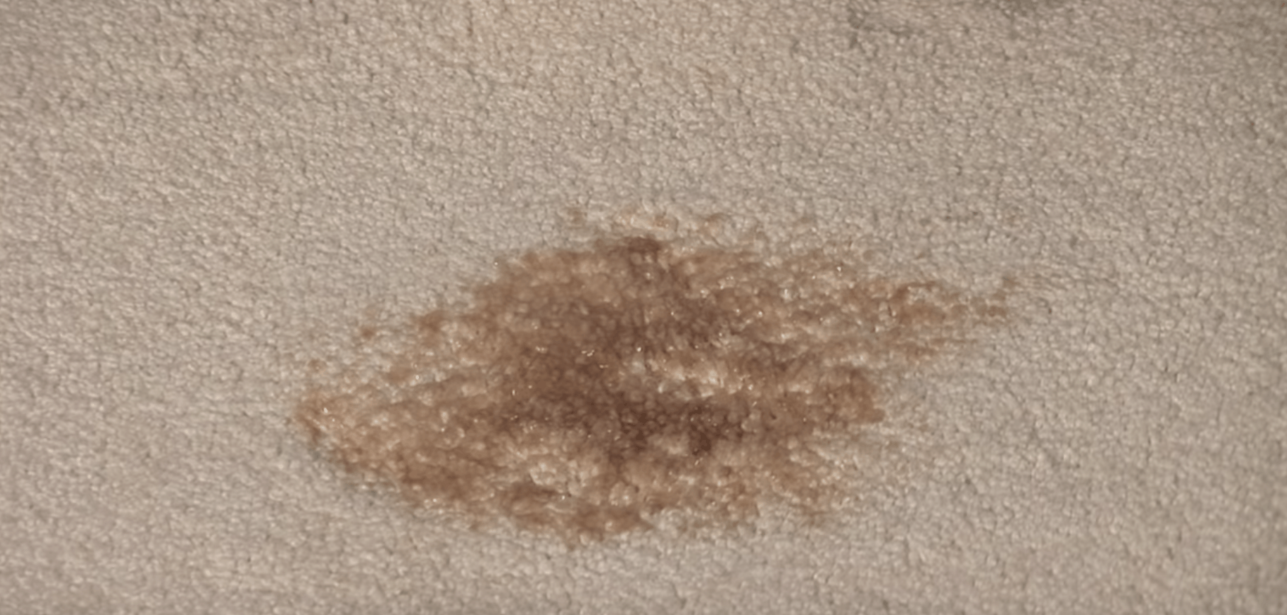 How To Remove Coke Stains From Carpet
