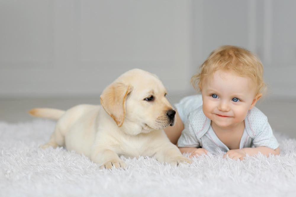 Is Bissell Carpet Cleaner Safe for Babies?